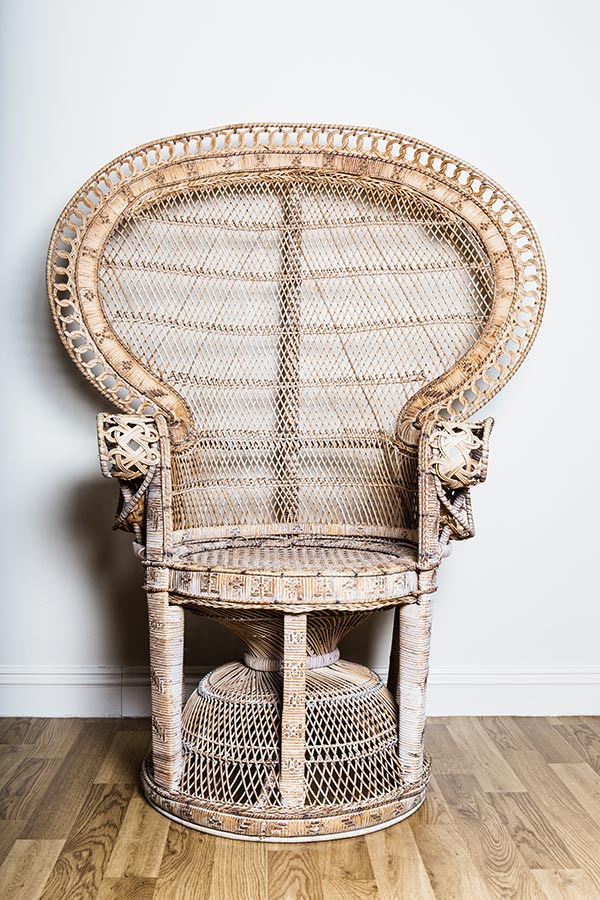 Vintage crockery and prop hire. This is a photograph of a single vintage peacock chair. Sourced by Botanical Vintage.